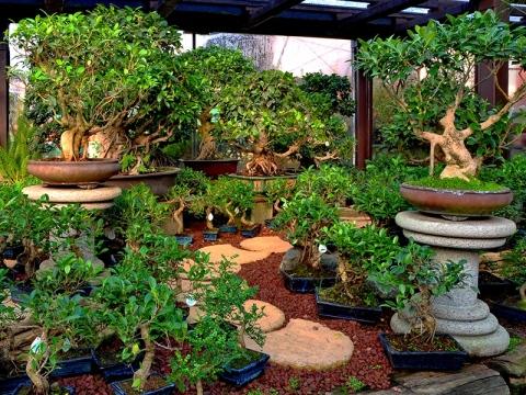Arredo da giardino torino e provincia mobilia la tua casa for Arredo giardino torino